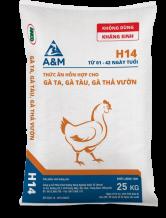 A&M H14