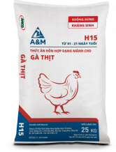 A&M H15