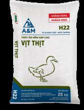 A&M H22