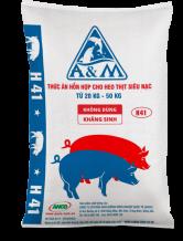 A&M H41
