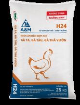 A&M H24
