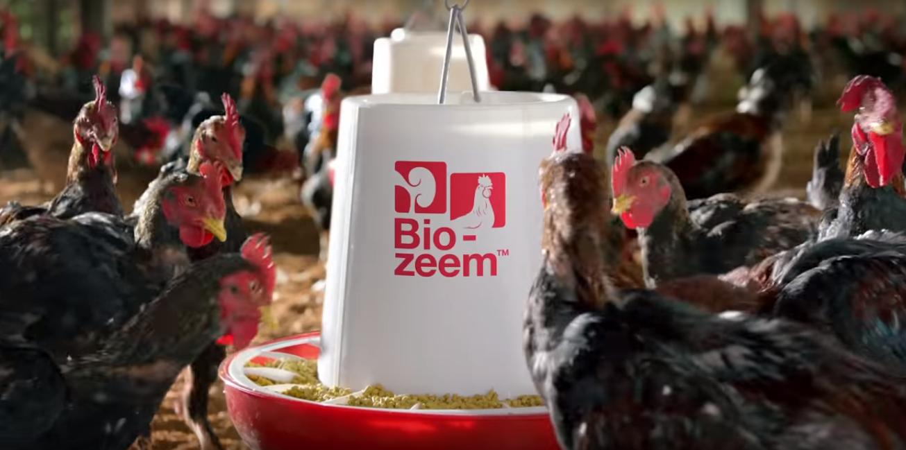 Bio-zeem GÀ THỊT - Đạt cân, Đẹp mã